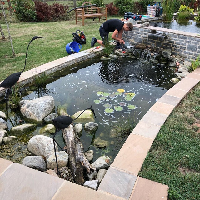 Image of electricians fitting new lighting to a fish pond in a back garden